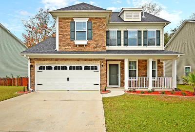 Summerville Single Family Home For Sale: 120 Elliot Creek Ln