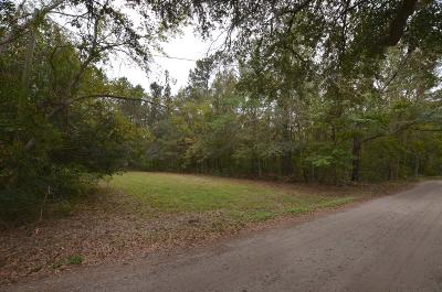 Residential Lots & Land For Sale: 517 Mercantile Road