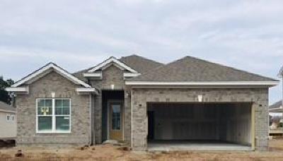 Johns Island Single Family Home For Sale: 1213 Hammrick Lane