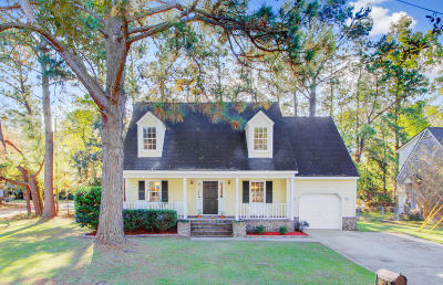 Charleston Single Family Home For Sale: 1142 Lining Court