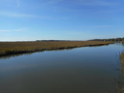 Edisto Island SC Residential Lots & Land For Sale: $198,000