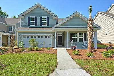 Ladson Single Family Home For Sale: 5225 American Holly Lane