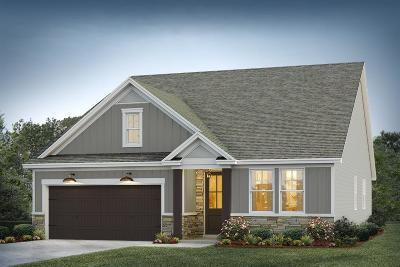 Moncks Corner Single Family Home For Sale: 2 Omaha Drive