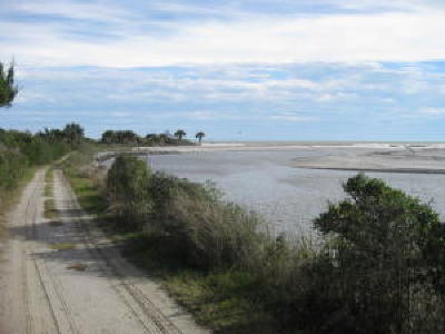 Edisto Island SC Residential Lots & Land For Sale: $185,000