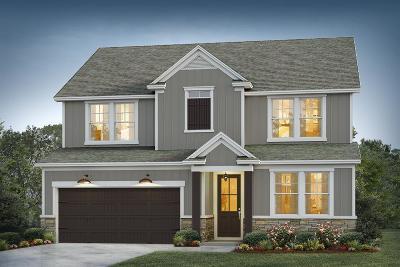 Moncks Corner Single Family Home For Sale: 3 Omaha Drive
