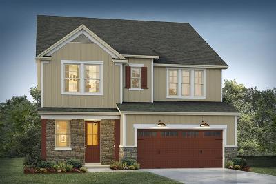 Moncks Corner Single Family Home For Sale: 4 Omaha Drive