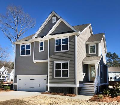 Charleston Single Family Home For Sale: 1424 Brockenfelt Drive