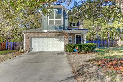 Johns Island Single Family Home Contingent: 3214 Blazer Horse Court