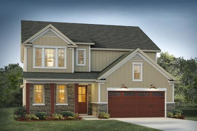 Moncks Corner Single Family Home For Sale: 7 Omaha Drive