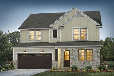 Moncks Corner Single Family Home For Sale: 8 Omaha Drive