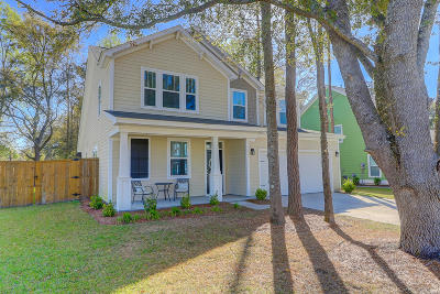 Summerville Single Family Home For Sale: 121 Long Needle Lane