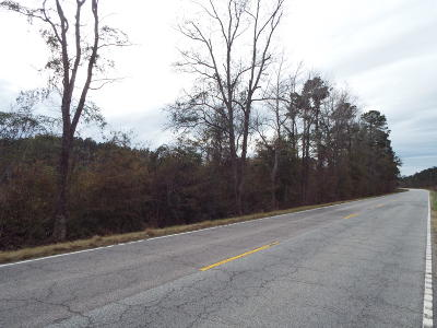 Residential Lots & Land For Sale: Hwy 78 Lane