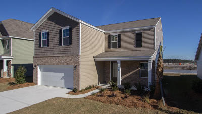 Summerville Single Family Home For Sale: 460 Zenith Boulevard