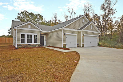 Single Family Home For Sale: 1133 Sapling Drive