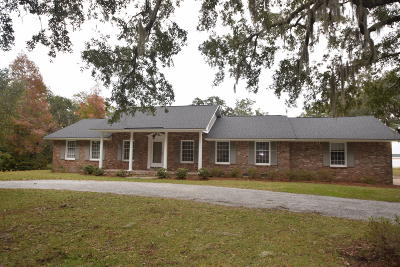 Charleston County Single Family Home For Sale: 4627 Shark Hole Road