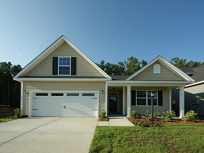 Berkeley County, Charleston County, Colleton County, Dorchester County Single Family Home For Sale: 615 Pendleton Drive