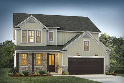 Moncks Corner Single Family Home For Sale: 205 Whirlaway Drive