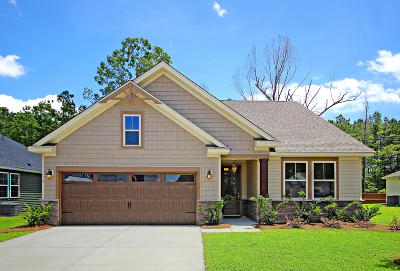 Berkeley County, Charleston County, Colleton County, Dorchester County Single Family Home For Sale: 219 Whirlaway Drive
