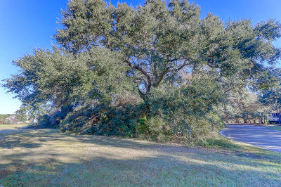 Residential Lots & Land For Sale: 4292 Turtle Landing Court