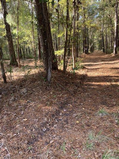 Awendaw Residential Lots & Land For Sale: 4938 Woodville Road