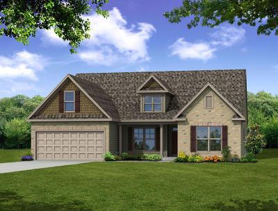 Moncks Corner SC Single Family Home For Sale: $387,630