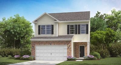 Goose Creek Single Family Home For Sale: 207 Daniels Creek Circle
