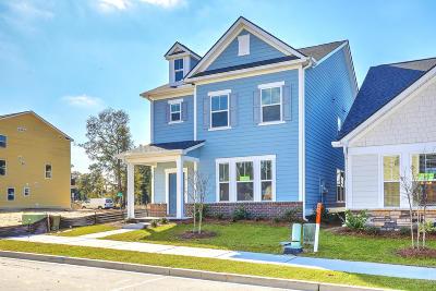 Charleston Single Family Home For Sale: 147 Rowans Creek Drive