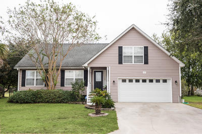 Single Family Home For Sale: 1017 Clearspring Drive