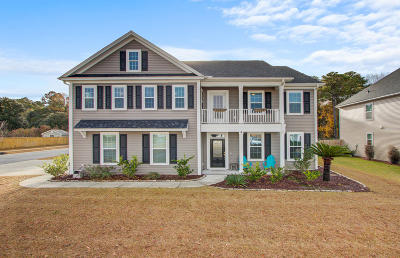Johns Island Single Family Home Contingent: 3221 Arrow Arum Drive