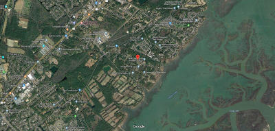 Mount Pleasant Residential Lots & Land For Sale: 3 Boston Grill Road