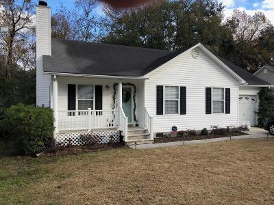 Single Family Home For Sale: 301 Stefan Drive