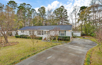 North Charleston Single Family Home For Sale: 9021 Ethel Road