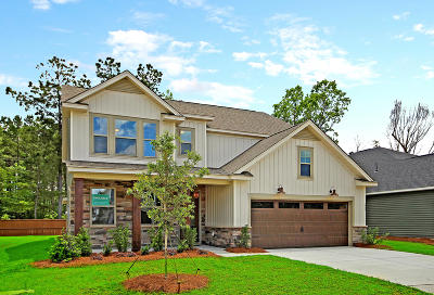 Moncks Corner Single Family Home For Sale: 215 Whirlaway Drive