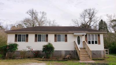 Johns Island Single Family Home For Sale: 3655 Morse Avenue