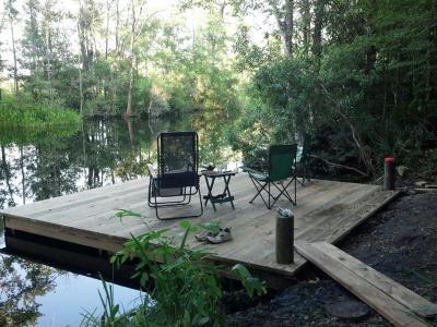 Walterboro Single Family Home For Sale: 192 Chessey Creek