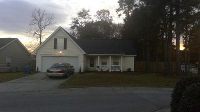 Goose Creek Single Family Home For Sale: 101 Penzance Boulevard