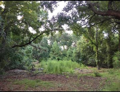 Johns Island Residential Lots & Land Contingent: 3426 Maybank Highway