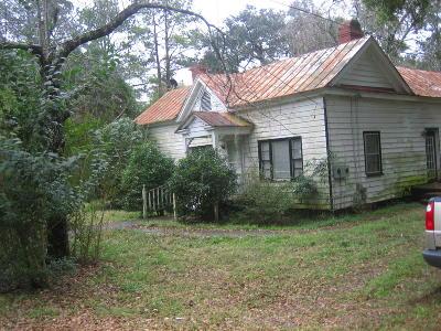 Walterboro Single Family Home For Sale: 204 Savage Street