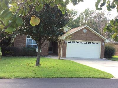 Single Family Home For Sale: 93 Ridge Lake Drive