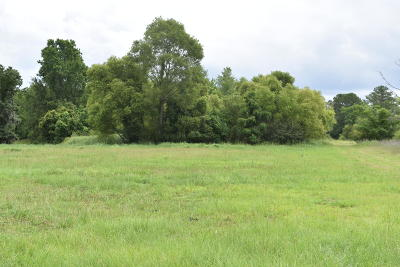 Residential Lots & Land For Sale: Hughes Road