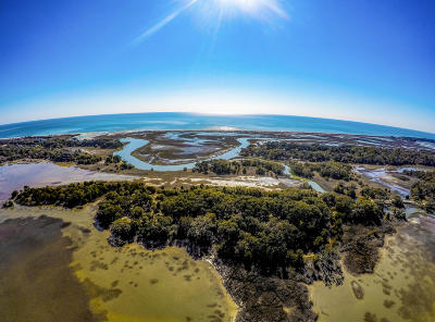 Edisto Island SC Residential Lots & Land For Sale: $985,000