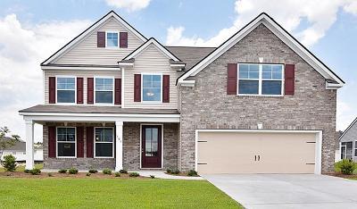 Summerville Single Family Home For Sale: 513 Kilarney Road