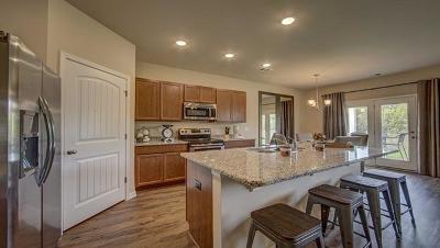Moncks Corner Single Family Home For Sale: 649 Woolum Drive