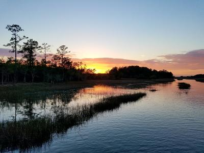 Johns Island Residential Lots & Land For Sale: Brickyard Road