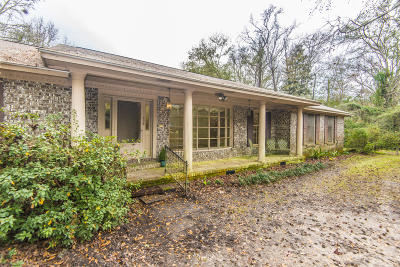 Johns Island Single Family Home For Sale: 594 River Road