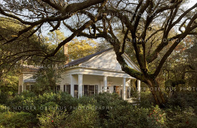 Walterboro Single Family Home For Sale: 120 Paul Street