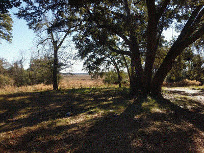 Wadmalaw Island Residential Lots & Land For Sale: 2733 Roseville Road