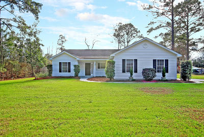 Johns Island Single Family Home For Sale: 3481 Plow Ground Road