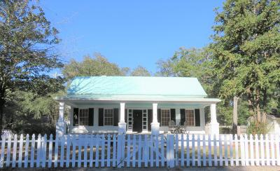 Walterboro Single Family Home For Sale: 401 Black Street