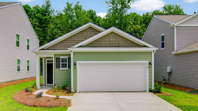 Moncks Corner Single Family Home For Sale: 440 Buckhannon Lane
